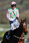 Ruby Walsh & Douvan Hurdles Cheltenham 2015 Mounts