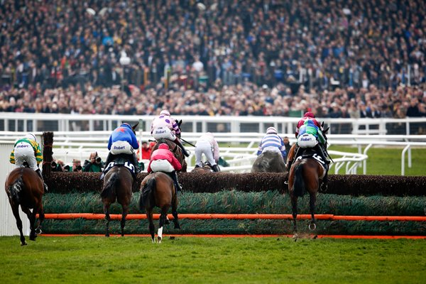 2015 Cheltenham Festival St Patrick's Thursday