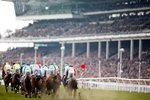 2015 Cheltenham Festival queen mother chase Canvas