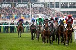 Cheltenham Gold Cup 2015 Canvas