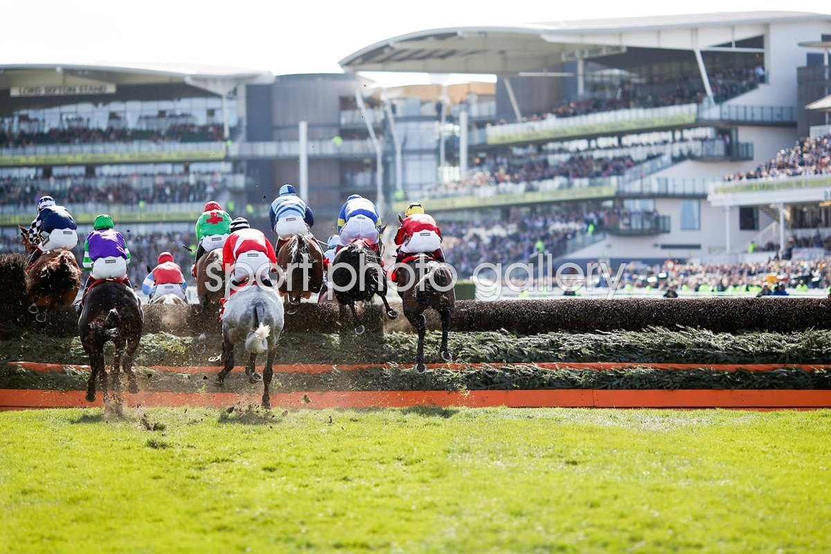 Grand National 2015
