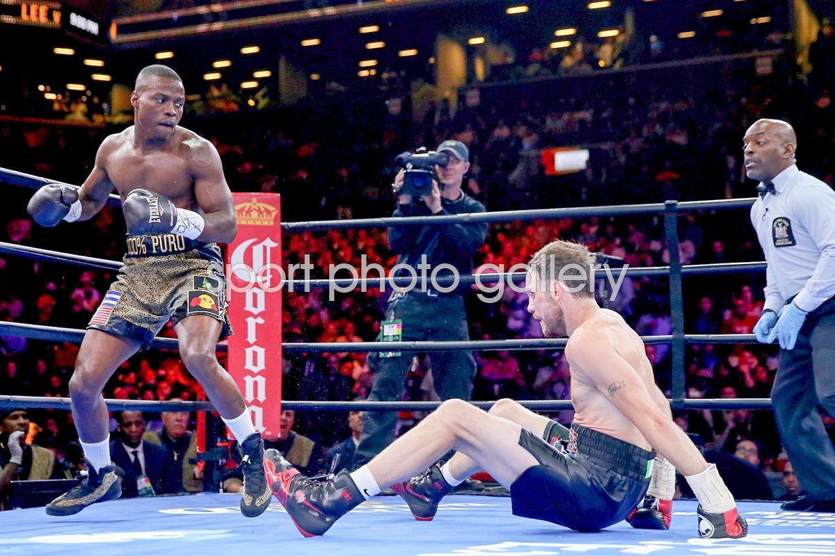 Andy Lee v Peter Quillin New York 2015