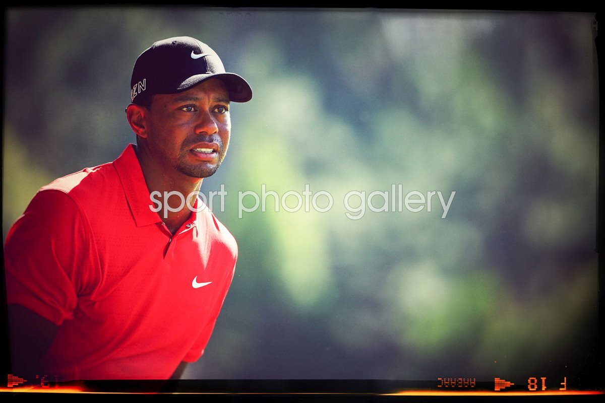 Tiger Woods THE PLAYERS Championship 2015