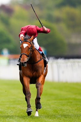 Star Of Seville Frankie Dettori York Races 2015