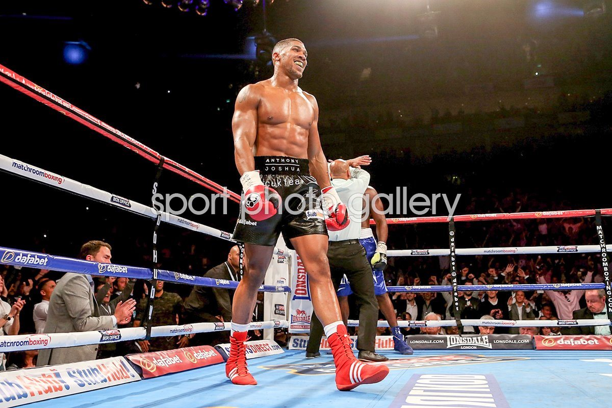 Anthony Joshua v Kevin Johnson London 2015