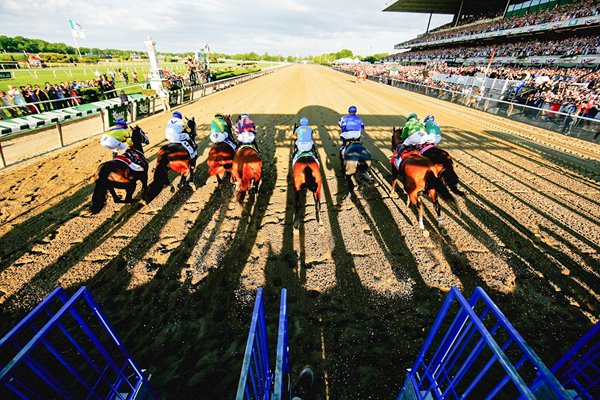 Field leaves the stalls at Belmont Stakes 2015
