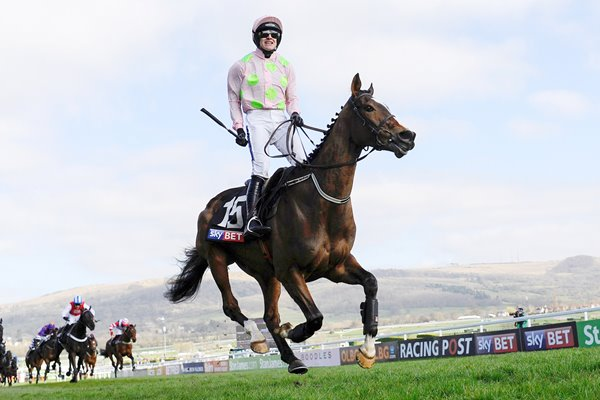 Ruby Walsh & Vautour Novices Hurdle Cheltenham 2014