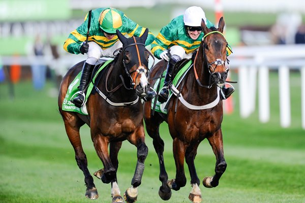 Barry Geraghty & Jezki win Champion Hurdle Cheltenham 2014