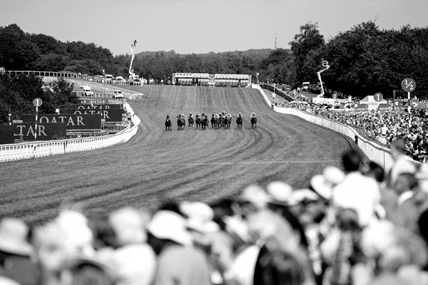 Goodwood Races Near the Finish BW