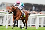 Frankel & Tom Queally Newbury 2011 Prints