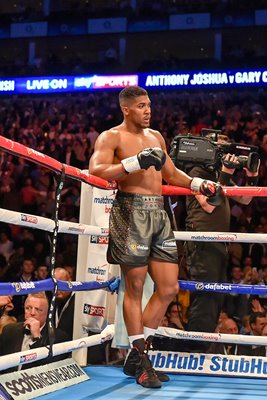 Anthony Joshua beats Gary Cornish O2 Arena 2015