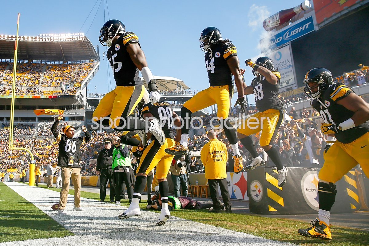 Pittsburgh Steelers Heinz Field Pittsburgh 2015