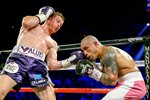 Miguel Cotto v Canelo Alvarez Las Vegas 2015 Mounts