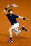 Andy Murray Great Britain Davis Cup Champion 2015  Prints