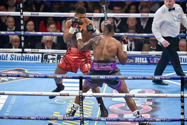 Anthony Joshua v Dillian Whyte London 2015