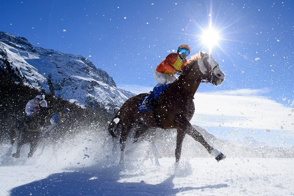 Freddy Di Fede Arable White Turf St. Moritz