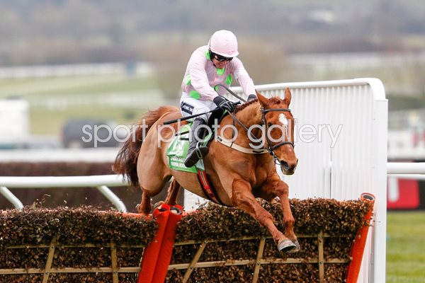 Annie Power & Ruby Walsh win Champion Hurdle Cheltenham 2016