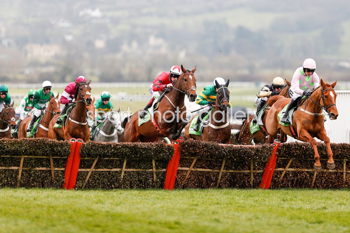 Ruby Walsh & Annie Power win Champion Hurdle Cheltenham 2016