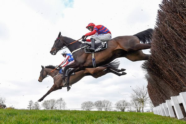 Sprinter Sacre wins Queen Mother Chase Cheltenham 2016