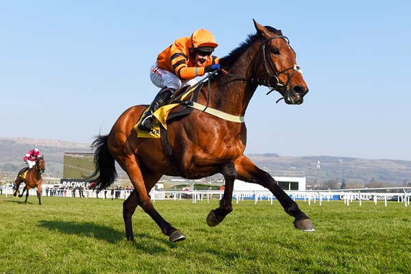 Tom Scudamore & Thistlecrack World Hurdle Cheltenham 2016