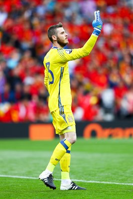 David de Gea Spain v Czech Republic Toulouse 2016