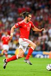 Gareth Bale Wales v Russia Toulouse 2016 Mounts