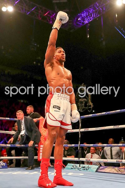 Anthony Joshua defends IBF World Heavyweight Title 2016
