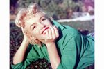 Marilyn Monroe in the park Canvas