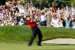2008 Tiger holes to force playoff at Torrey Pines  Prints