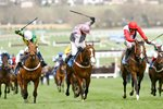 Barry Geraghty and Punjabi win Champion Hurdle 2009 Prints