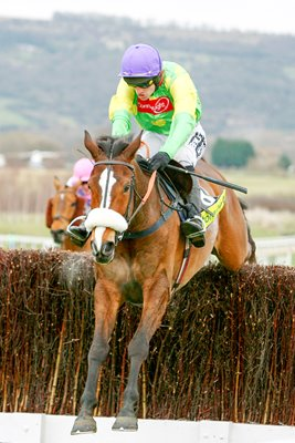Kauto Star 2009 Gold Cup Action