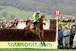 Ruby Walsh and Kauto Star clear the last - Gold Cup 2009 Prints