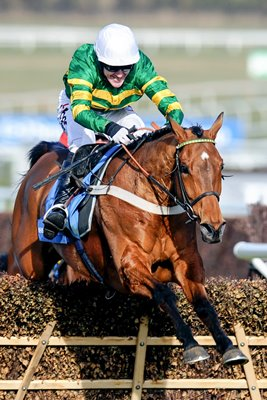Tony Mccoy Binocular win Champion Hurdle 2010