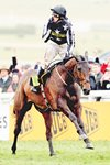 Paddy Brennan wins Gold Cup on Imperial Commander Prints