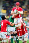 Alun Wyn Jones Wales v Ireland 1/4 Final Prints
