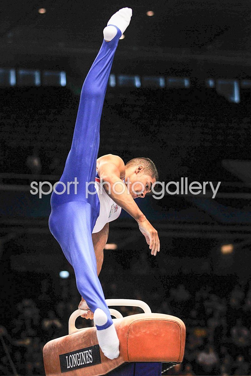 Louis Smith Gymnastics World Championships 2011