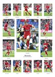 2015 Wales Six Nations Championship Team Special Prints