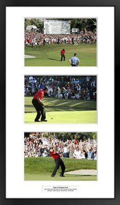 Tiger Woods Greatest Putt US Open Torrey Pines 2008