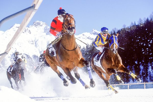 Horse racing on snow
