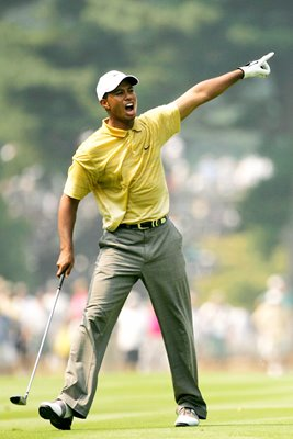 "Tiger Woods ""Fore"""