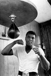 Cassius Clay (later Muhammad Ali) 1965 Frames
