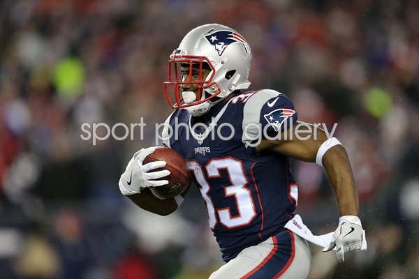 Dion Lewis New England Patriots AFC Championship 2017