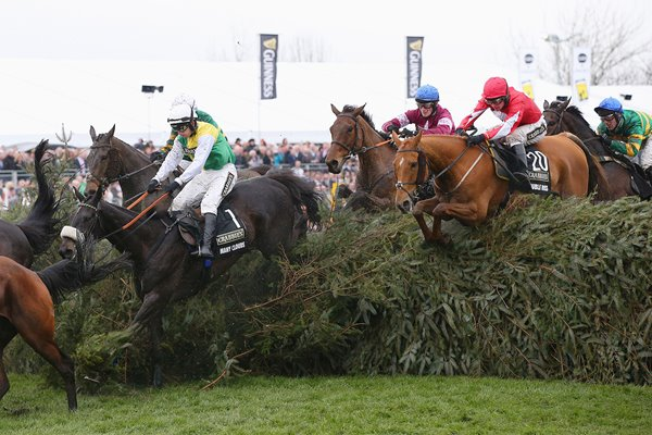 Many Clouds 2016 Crabbie's Grand National