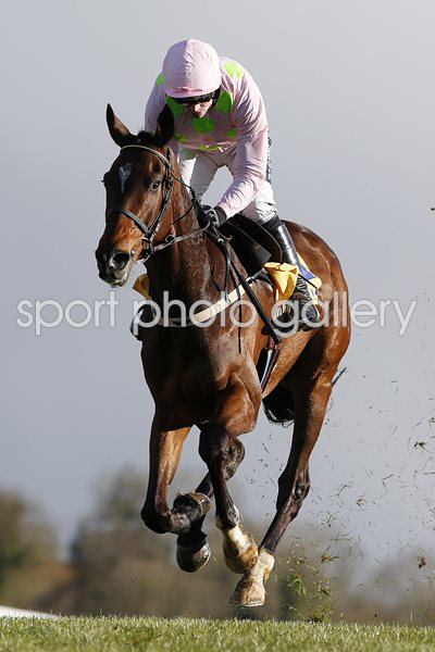 Ruby Walsh riding Douvan Punchestown 2016