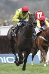Robbie Power & Sizing John win Cheltenham Gold Cup 2017 Prints
