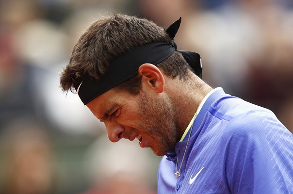 Juan Martin Del Potro 2017 French Open