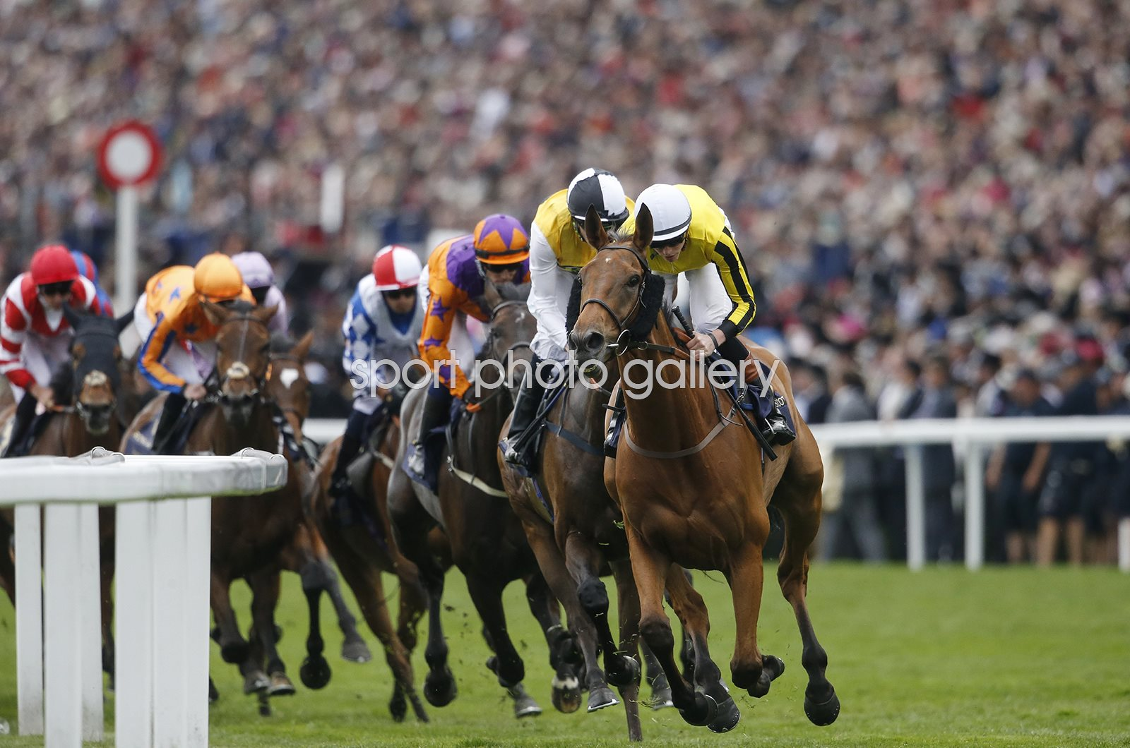 James Doyle & Big Orange win Gold Cup Royal Ascot 2017