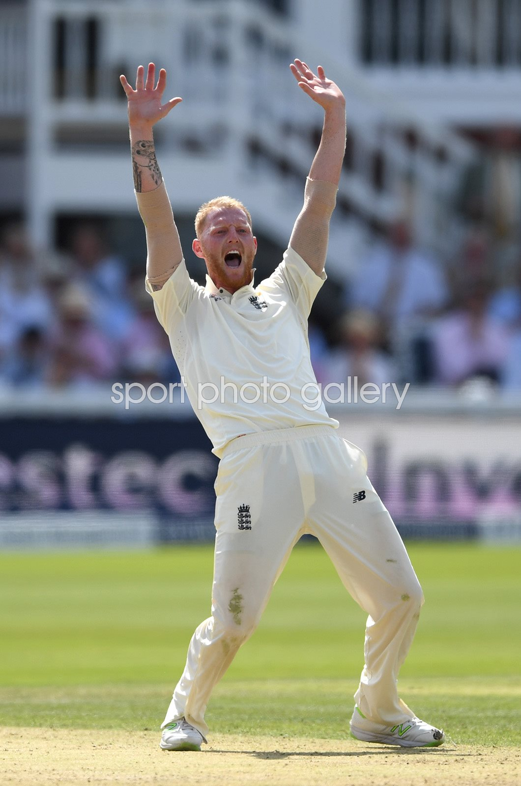 Ben Stokes England appeals v South Africa Lord's 2017