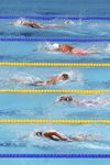 Katie Ledecky USA laps field World Swimming Budapest 2017 Canvas