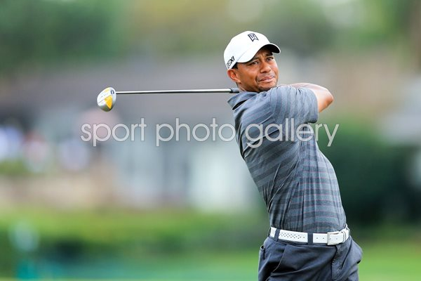 Modal title. Save changes. Close. Tiger Woods Arnold Palmer Invitational 2012
